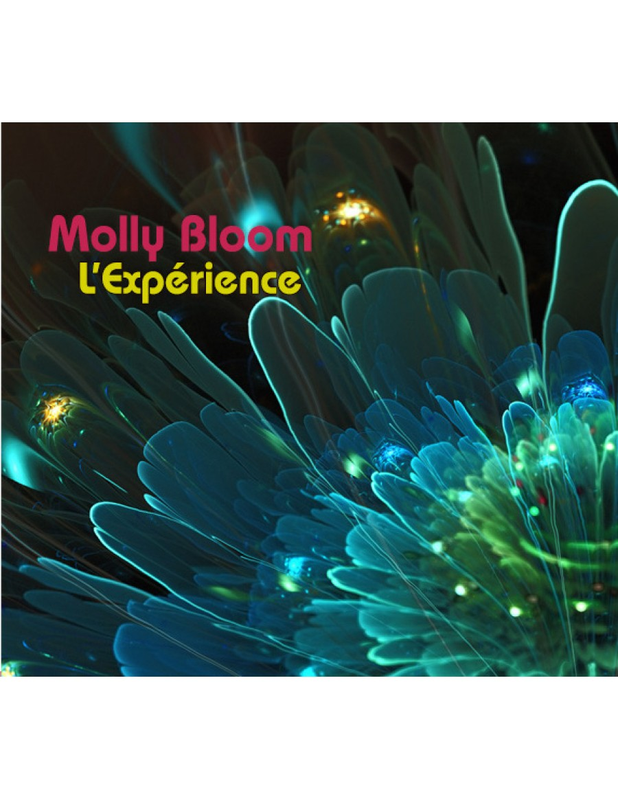 SOIREE Molly Bloom pour 1 personne